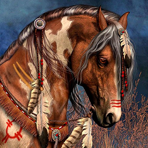 (5D Diamond DIY Painting by Number Kits, AxiEr Diamond Crystal Rhinestone Embroidery Paintings Pictures Arts Craft, 11.8 x 11.8 inches(Indian Horse Head))