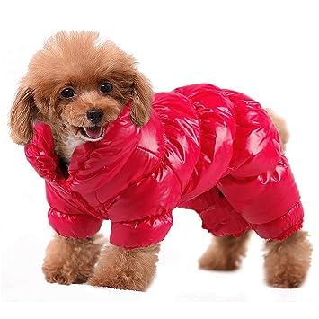 Amazon.com: PET ARTIST - Abrigos de invierno para perros ...