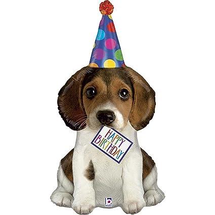 happy birthday puppy images Amazon.com: XL 41