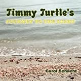 Timmy Turtle's Journey to the Light, Carol Schacht, 1449005039