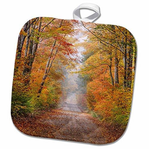 3drose-danita-delimont-michigan-road-in-fall-color-schoolcraft-county-upper-peninsula-michigan-8x8-p