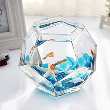 LSHUAIDJ Acuario Acuario Goldfish Bowl Betta pecera Mini Mini Escritorio Creativo pecera acrílico Vidrio orgánico pecera: Amazon.es: Hogar