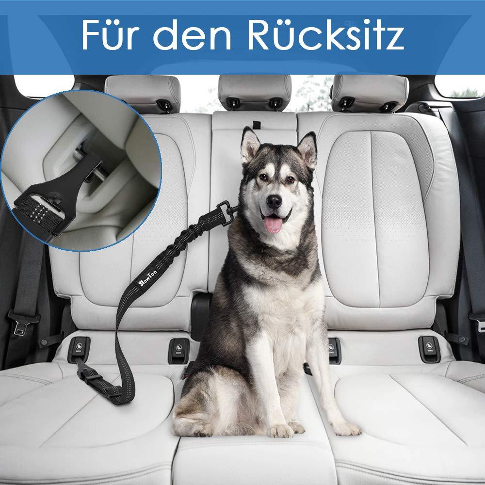 2 Packungen Latch Bar Attachment Hund f/ür kleine mittlere gro/ße Hunde Elastische Sicherheitsgurt Tether f/ür Hundegeschirr Einstellbare Pet Safety Leads SlowTon Hundesicherheitsgurt