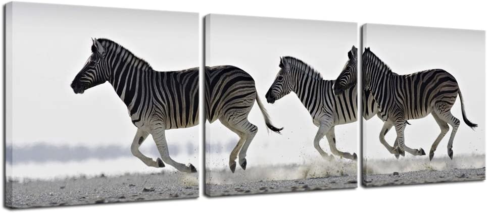 Pyradecor Zebra Canvas Prints Wall Art Black and White Animals Pictures Paintings for Living Room Bedroom Bathroom Home Decorations 3 Piece Modern Stretched and Framed Giclee Horse Artwork