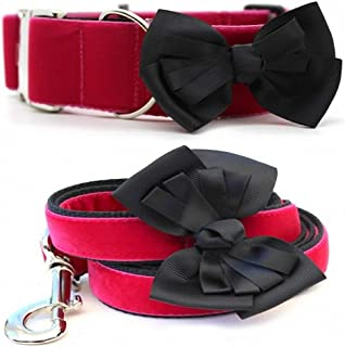 "product image for Diva-Dog 'Marilyn' 2"" Wide Chainless Martingale Dog Collar, Matching Leash Available"