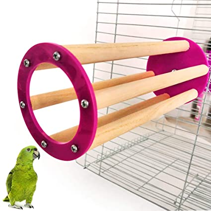 Amazon.com: JYS365 Pet Parrots Pigeon Birds Pet Toy Bird ...