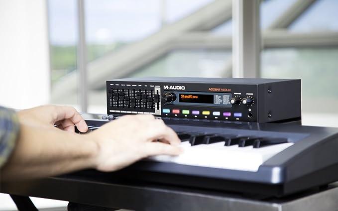 M-Audio Accent memoria   USB MIDI Piano módulo de sonido: Amazon.es: Instrumentos musicales
