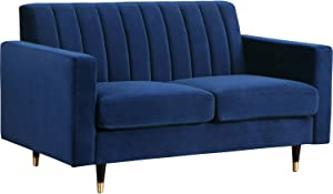 Meridian Furniture 619 L Lola Collection Modern   Contemporary Velvet Upholstered Loveseat with Gold Tipped Black Legs and Channel Tufted Design, 60