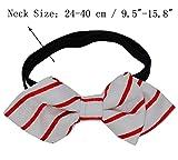 Heypet Pet Dog Cat Adjustable Bow Tie