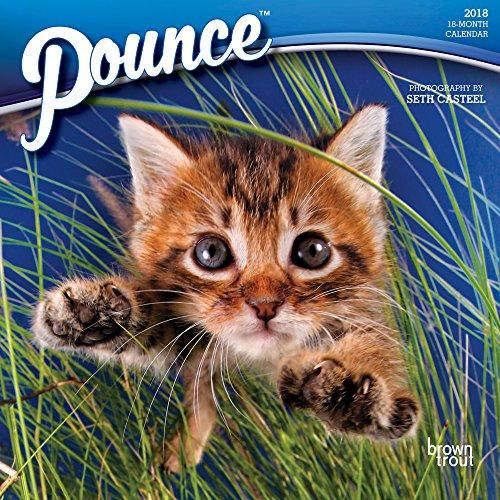 Pouncing Cat - 8
