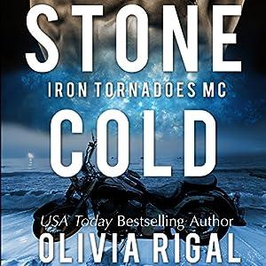 Stone Cold Audiobook