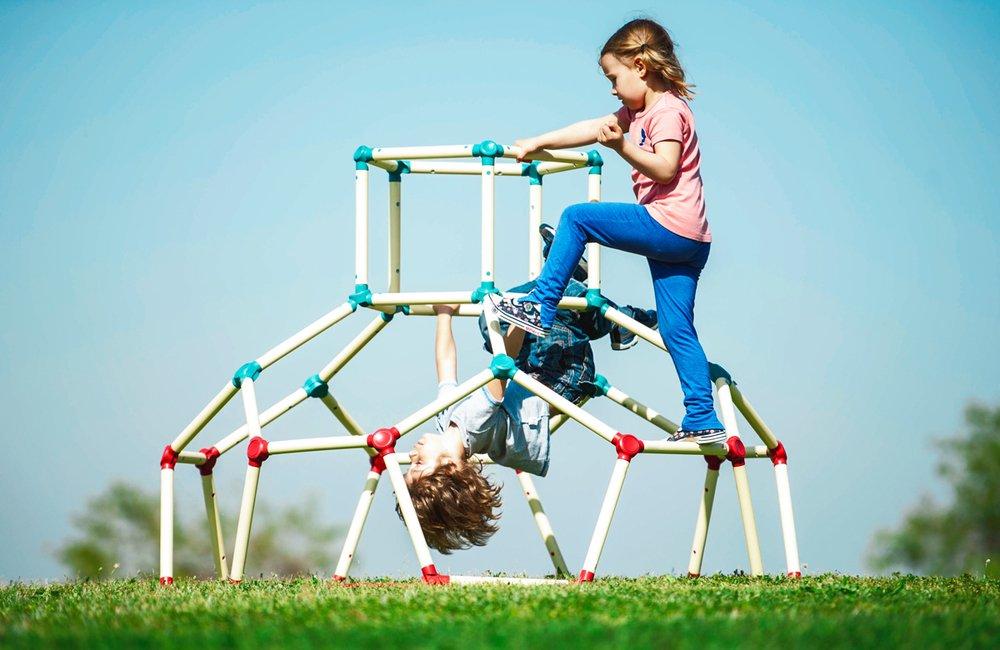 Dome Climber & APP Jungle Gym Monkey Bar Climbing Frame Structure by Plum