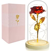 BEFINR Beauty and The Beast Rose Enchanted Flower with LED Light in Glass Dome for Christmas Valentine's Day Mother's…