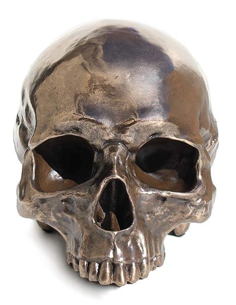 Amazon.com: Figura decorativa de calavera sin mandíbula ...