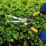 Centurion Garden and Outdoor Living 208 Garden/Lawn Hedge Shear, 10', Yellow