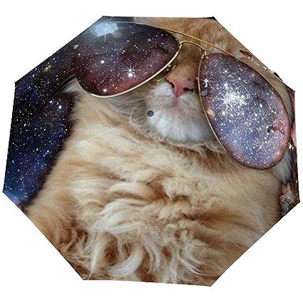 Gafas de Sol invertidas invertidas a Prueba de Viento Cute ...