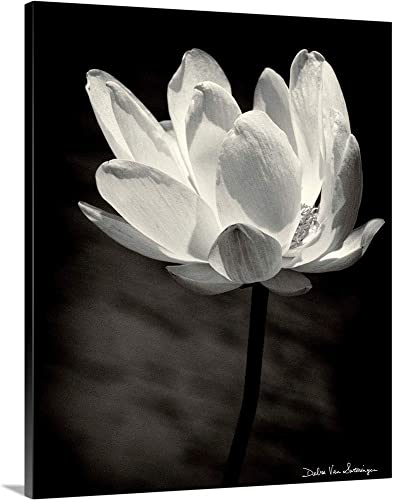 Lotus Flower X Canvas Wall Art Print