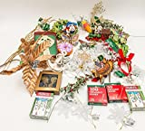 JZ Bundles Starter Set - Best of Christmas Option C - Kurt Adler - 37-Piece Bundle - A Bundle of Christmas Ornaments Great Gift