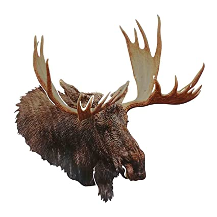 Amazon.com: Black Forest Decor Moose Head Metal Wall Art: Home & Kitchen