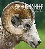 img - for Bighorn Sheep (Living Wild (Hardcover)) by Melissa Gish Creative Education (2015-09-01) book / textbook / text book