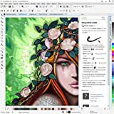 CorelDRAW Graphics Suite 2017 Education Edition for PC (Old Version)