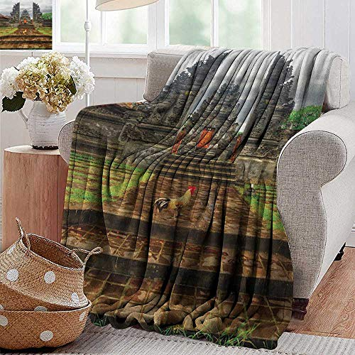 (XavieraDoherty Luxury Flannel Fleece Blanket,Balinese,Traditional Balinese Architecture Gate Temple Tourist Attractions Asian Monument, Brown Green,All Season Light Weight Living Room/Bedroom 50