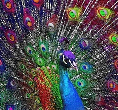 5D Artist Painting Kit - DIY Cross Stitch Kit (Size:16x16 in) Great Designs, Diamond Embroidery Kit for Art & Craft, Living Room Wall Decor, Home Decor (Psychedelic Peacock)