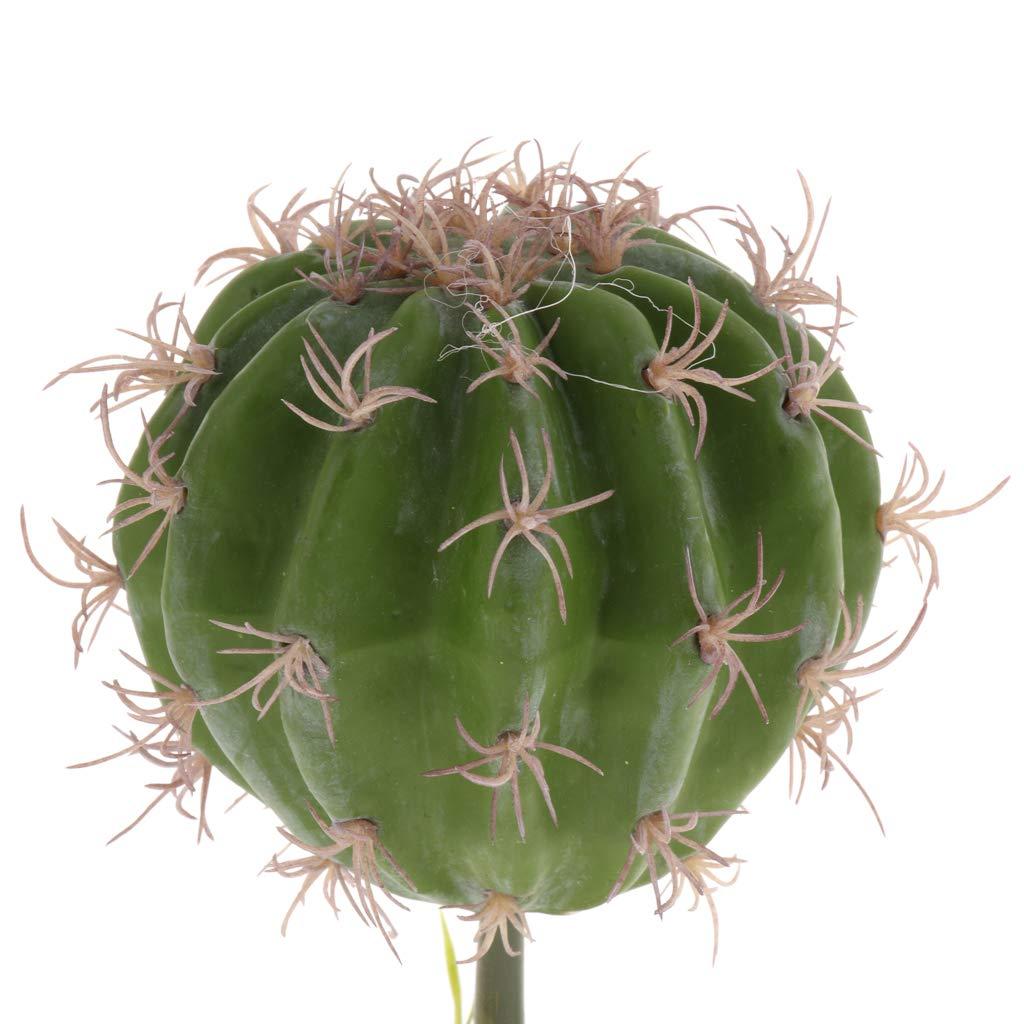 B Blesiya Planta Suculenta con Base Resina Reptil Complimentos Pecera Acuario Plantado Fácilmente Cómodo - Estilo 2: Amazon.es: Jardín