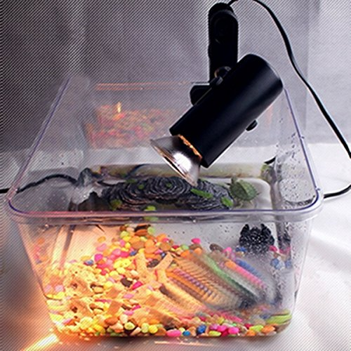 Incubation Ceramic Heat Uv Uvb Lamp Light Holder Brooder Reptile Basking Light