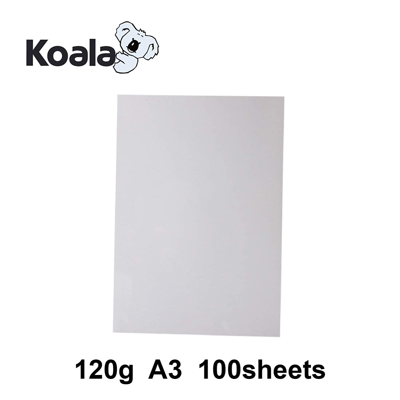 100 fogli KOALA Carta fotografica laser opaca fronte//retro A4 210x297mm 120 g//m/²
