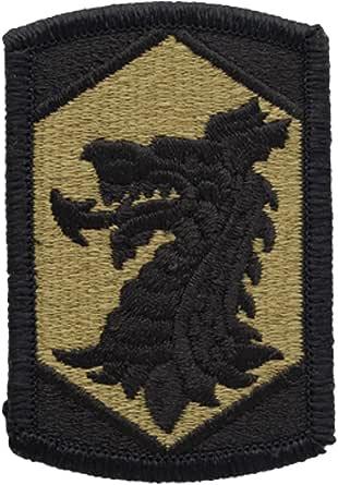 Army Unit Patch 404th Maneuver Enhancement Chemical Brigade Dragons Fight OCP