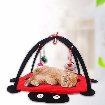 Tookie Cama para Mascota, Gato, Perro, móvil, Actividades Divertidas, Juguetes, colchoneta de Juguete para Colgar.: Amazon.es: Productos para mascotas