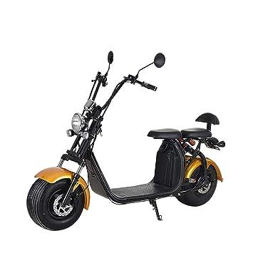 Smarthlon - Patinete eléctrico Harley con batería de Litio ...