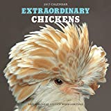 Extraordinary Chickens 2017 Wall Calendar