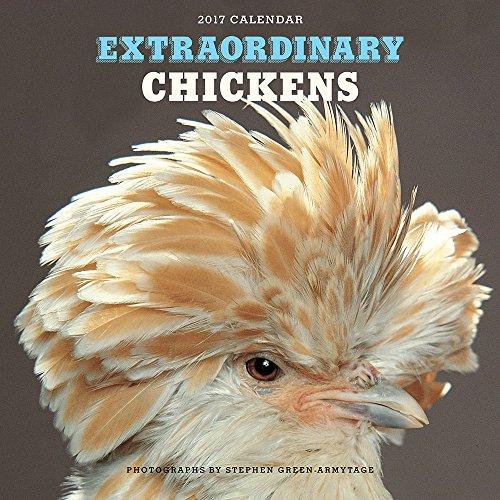 Extraordinary Chickens 2017 Wall Calendar