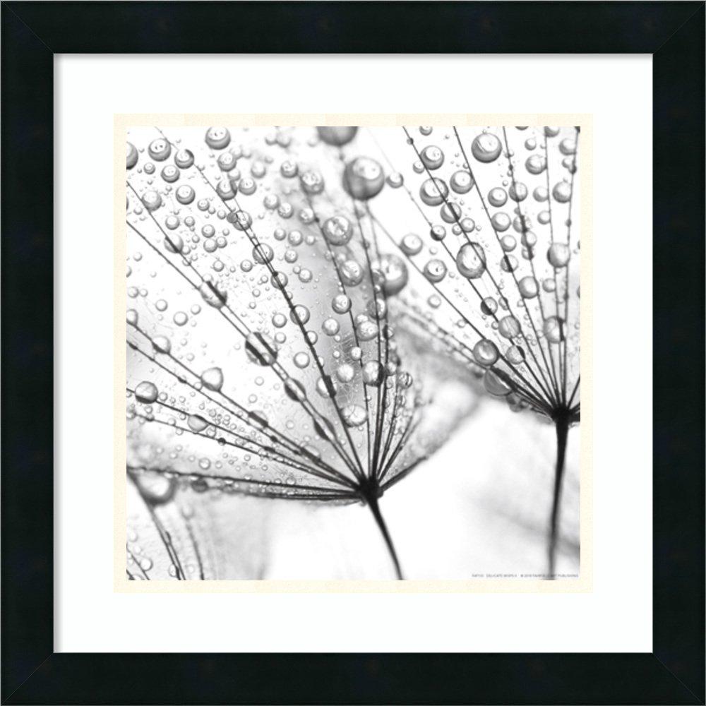 アートフレーム印刷' DelicateすじII ' Size: 18 x 18 (Approx), Matted ホワイト 3805988 Size: 18 x 18 (Approx), Matted Mezzanotte Black,mat:smooth Bright White B01L8KPRIU
