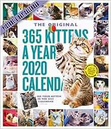 Calendario 365 2020.365 Kittens A Year Picture A Day Wall Calendar 2020 Workman