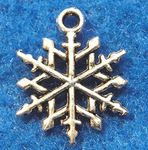 10Pcs. Tibetan Silver Snowflake Charms Earring Drops Pendants Findings CH80 Crafting Key Chain Bracelet Necklace Jewelry Accessories Pendants ()