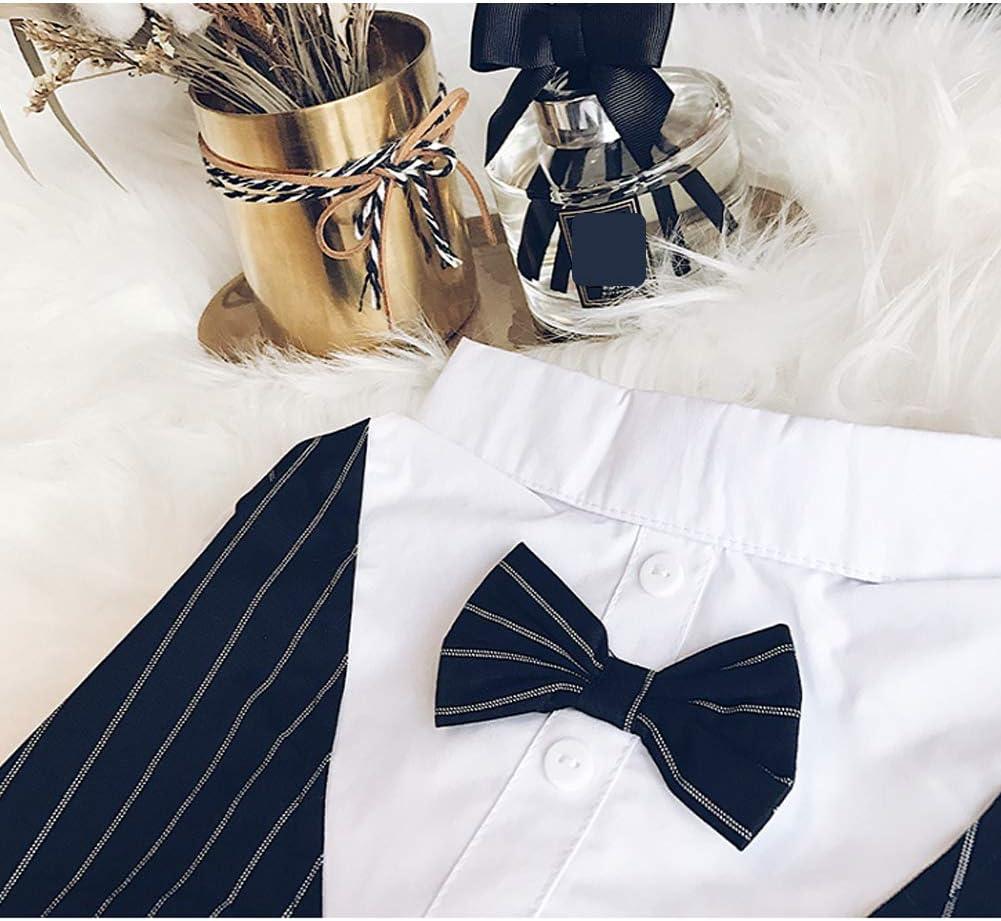 Meioro Ropa para Mascotas Camisa para Perros Perro Smoking Tie Bow Tie Shirt Adecuado para el Banquete de Boda Bulldog francés Bulldog Pug (XXL, Camisa de Pajarita): Amazon.es: Productos para mascotas