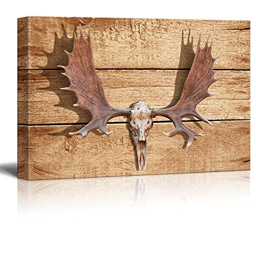 Rustic Elk Antler Wall Decor ation