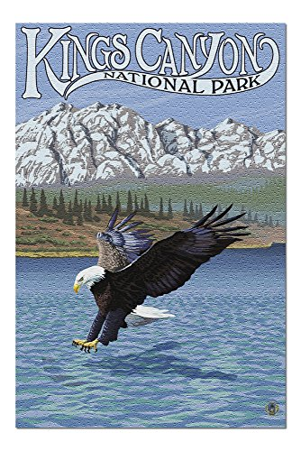 Kings Canyon National Park - Eagle Fishing (20x30 Premium 1000 Piece Jigsaw Puzzle, Made in USA!)