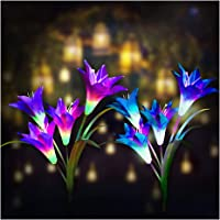 2-Pack Digiroot Outdoor Solar Garden Stake Lights with 8 Lily Flower