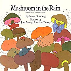 Mushroom in the Rain