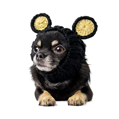 Zoo Snoods Black Bear Dog Costume