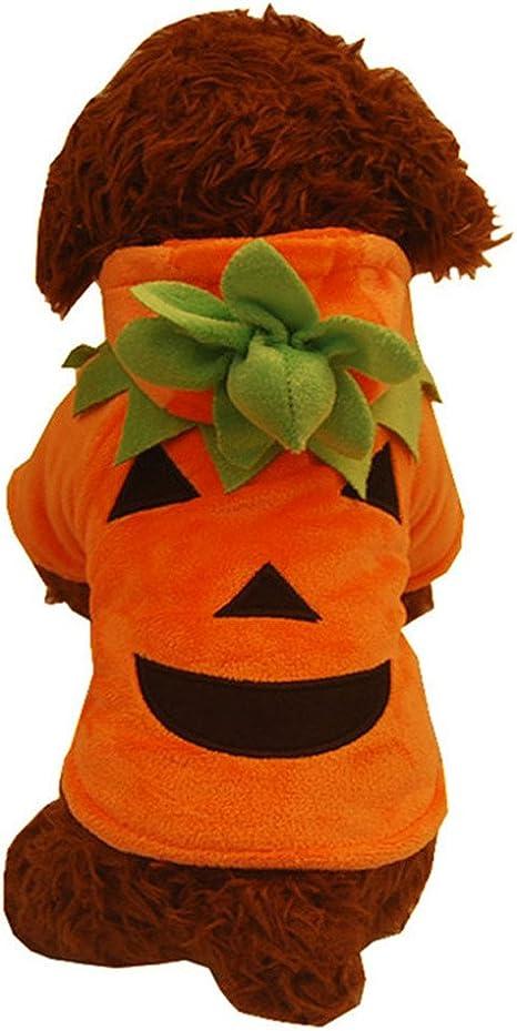 AmaMary Disfraz de Calabaza de Halloween para Perro, Lindo Perro ...