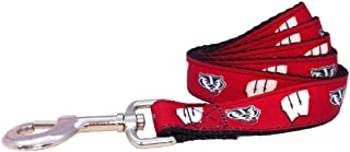 product image for Wisconsin Dog Leash-Wisconsin Badgers Dog Leash-2 Sizes (6 Foot-Large)