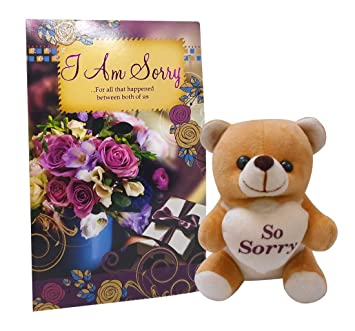 Saugat Traders Sorry Gift Combo With Soft Teddy Greeting Card