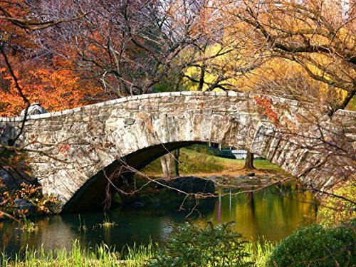 Stone Bridge Central Park -Oil Painting On Canvas Modern Wall Art Pictures For Home Decoration Wooden Framed (20X16 Inch, Framed)