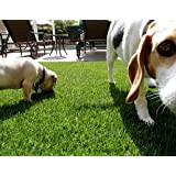 NYOG Pet Grass - Synthetic Lawn/Turf Grass for Indoor/Outdoor Landscapes - 3ft x 8ft
