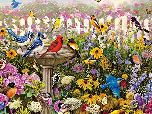 Songbirds At The Birdbath F1 -Oil Painting On Canvas Modern Wall Art Pictures For Home Decoration Wooden Framed (20X16 Inch, Framed)